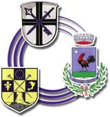 Comitato per i gemellaggi